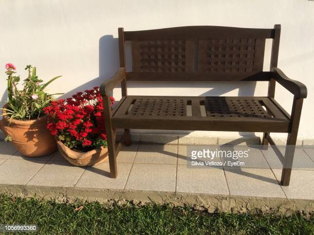 Fantastic Worlds Best Potted Plant On Wooden Bench Stock Pictures Caraccident5 Cool Chair Designs And Ideas Caraccident5Info