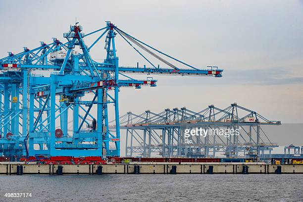 Ensemble de conteneur terminal au port de Rotterdam Maasvlakte