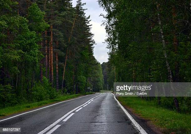 Empty Country Road Amidst Trees