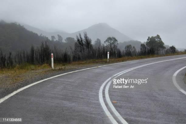 empty curvy road in tasmania australia - rafael ben ari stock-fotos und bilder