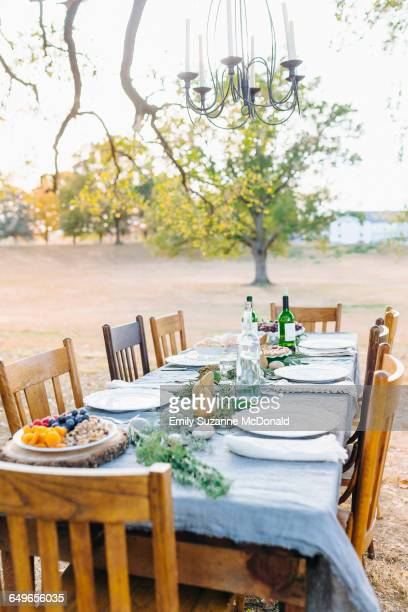Empty dinner table in field