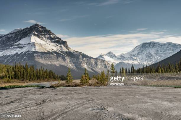 empty dirt beach with traces against canadian rockies - canadian rockies stock pictures, royalty-free photos & images