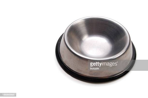 Empty Dog Dish