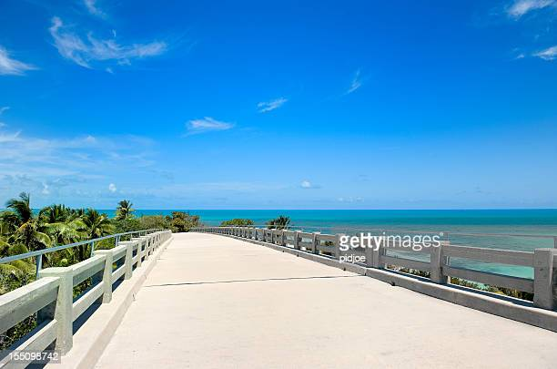 empty elevated road near tropical beach Florida USA