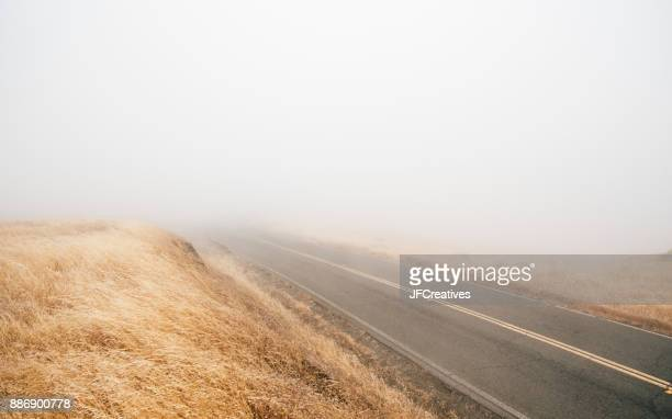 Empty foggy road, Fairfax, California, USA, North America