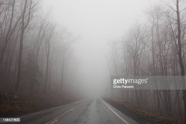 empty foggy road in central pennsylvania. - state college pennsylvania stock pictures, royalty-free photos & images