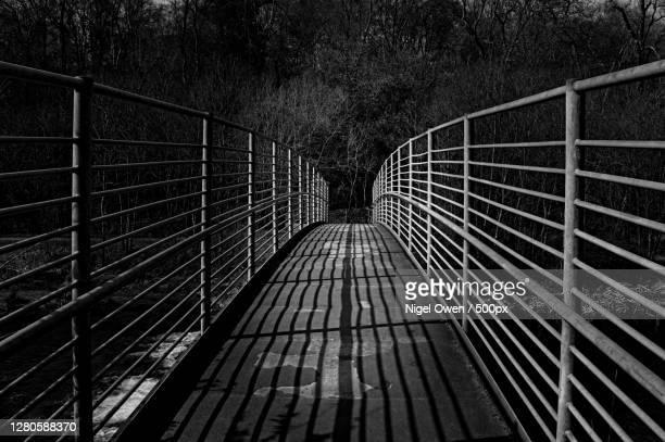 empty footbridge in forest,taff bargoed,united kingdom,uk - nigel owen stock pictures, royalty-free photos & images