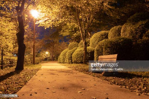 empty footpath amidst trees in park during autumn - naruto stock photos and pictures