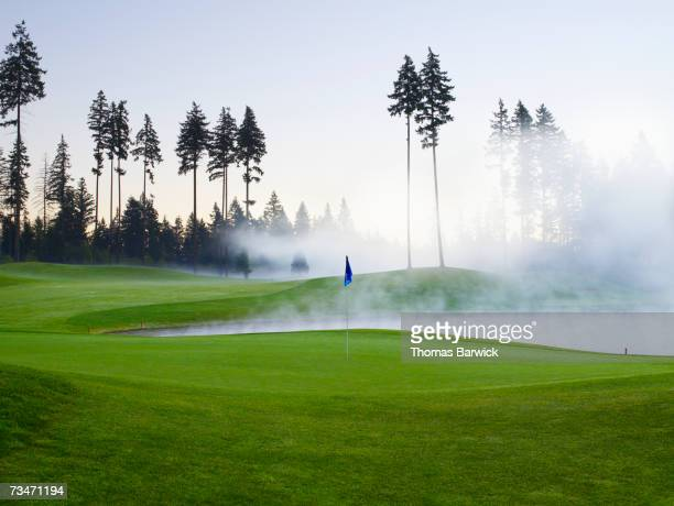 Empty golf course with flag and surrounding trees