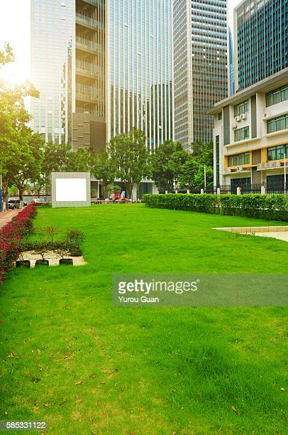 Empty green field around by business zone in Guangzhou,China.