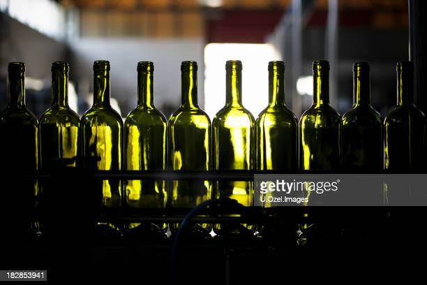 Empty green wine bottles lined up in bottling plant