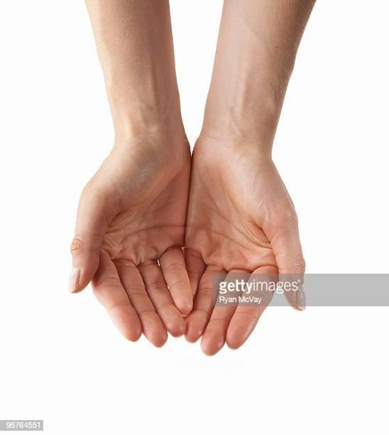 empty hands on white