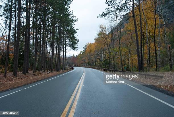 Empty highway in autumn