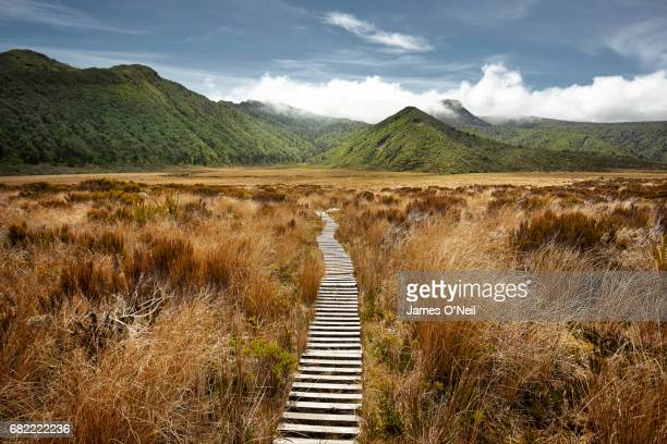 empty hiking path in open landscape - beauty in nature stock pictures, royalty-free photos & images