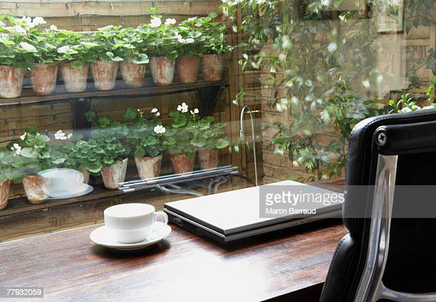 Empty home office with mug on desk and garden outdoors