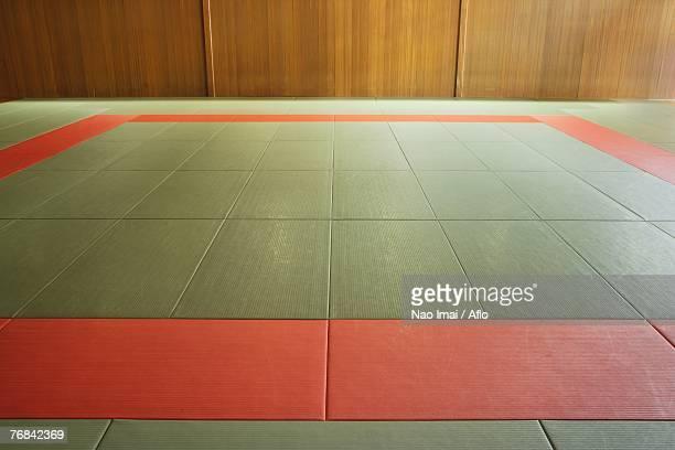 empty judo dojo - 柔道 ストックフォトと画像