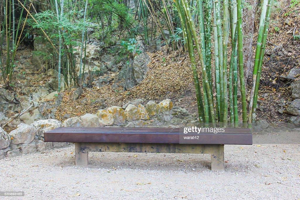 Empty long bench in the forest : Stock Photo