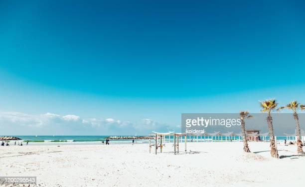 empty mediterranean beach - tel aviv stock pictures, royalty-free photos & images