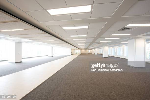 empty modern office space - ceiling stock pictures, royalty-free photos & images