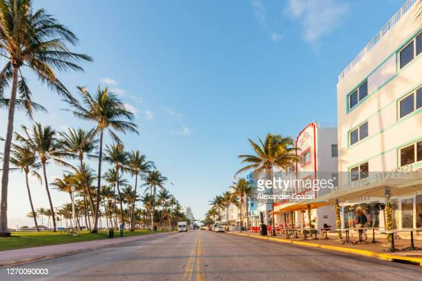 empty ocean drive in the morning, south beach, miami, usa - miami beach stock pictures, royalty-free photos & images