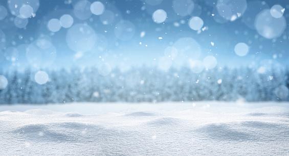 Empty panoramic winter background 1181599019