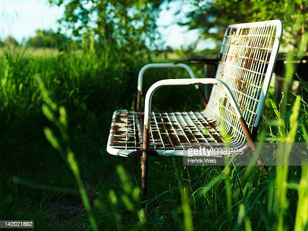 Empty park bench in grass