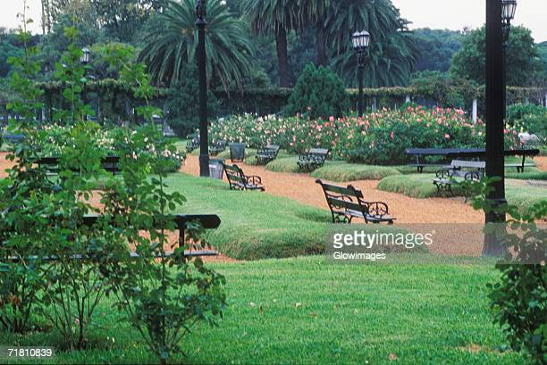 Empty park benches in a garden