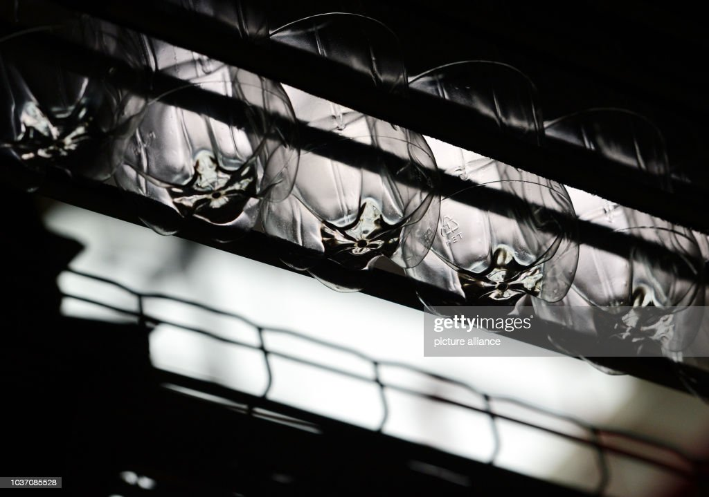 Coca-Cola Production Facility Genshagen Pictures   Getty Images