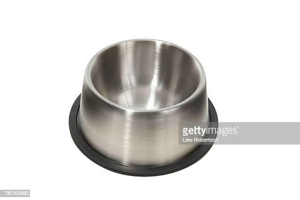 Empty Pet Food Dish