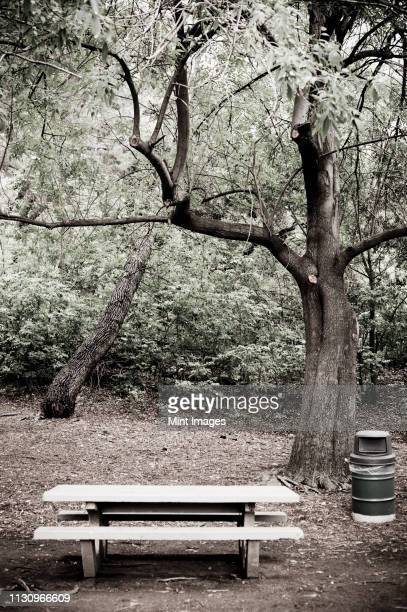 empty picnic area - desaturated stock pictures, royalty-free photos & images