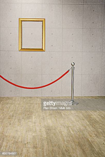 Empty picture frame behind velvet rope