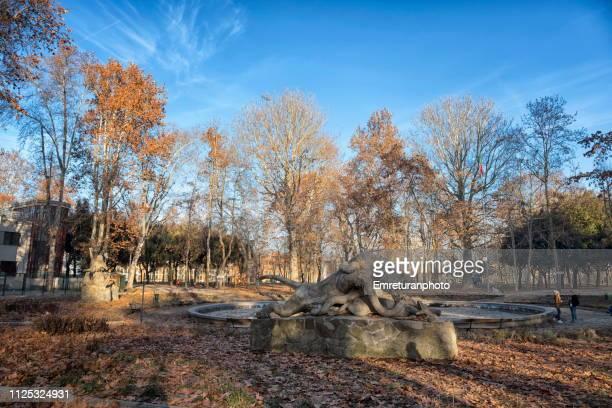 empty pond in winter with lion and snake statue in public park,bologna. - emreturanphoto fotografías e imágenes de stock