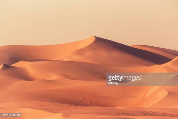 空の四半期砂漠砂丘ルーブ'アルカリ風景 - 砂丘 ストックフォトと画像