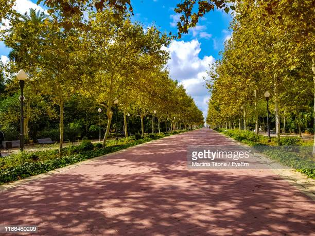 empty road along plants and trees against sky - castellon de la plana stock pictures, royalty-free photos & images