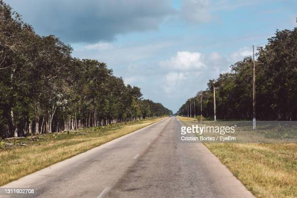 empty road along trees and plants against sky - bortes stock pictures, royalty-free photos & images