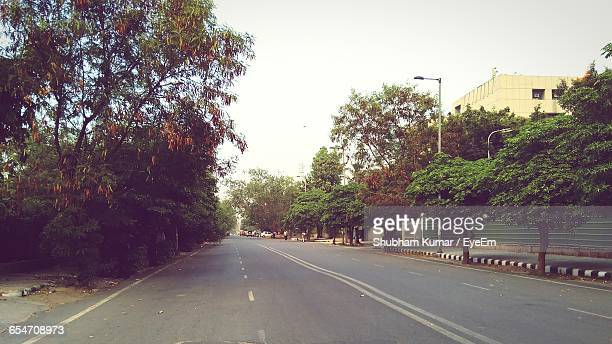 empty road along trees - new delhi stock pictures, royalty-free photos & images