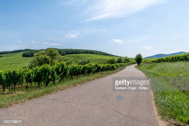 empty road amidst field against sky,elsass,france - norbert zingel stock-fotos und bilder