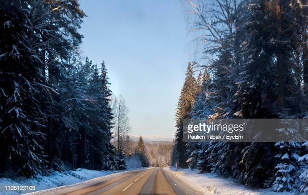 empty road amidst snow covered trees against sky - paulien tabak foto e immagini stock
