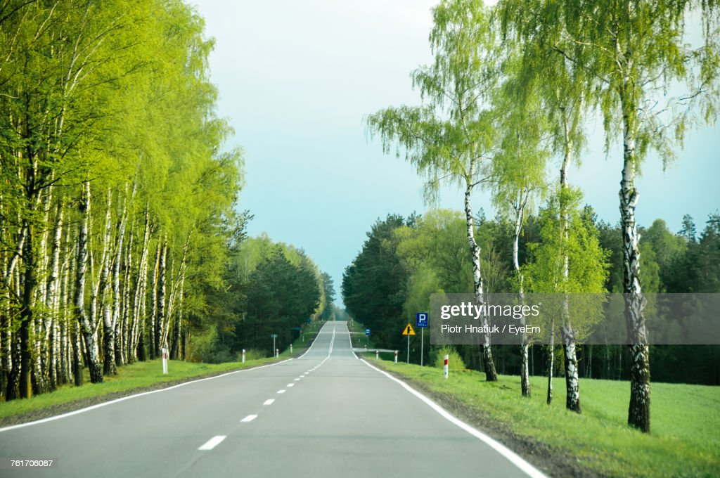 Empty Road Amidst Trees Against Sky : Stock Photo