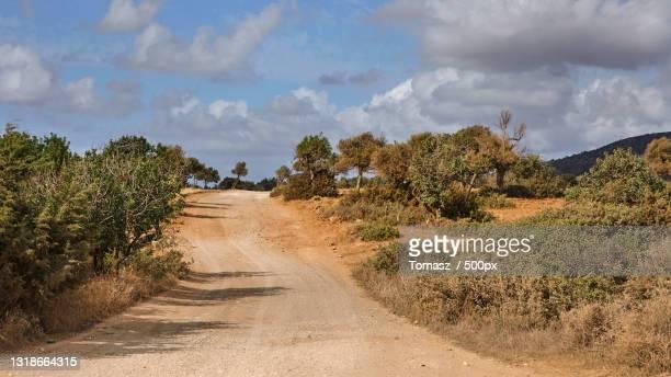 empty road amidst trees against sky,akamas,cyprus - アカマス半島 ストックフォトと画像