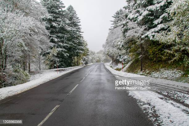 empty road amidst trees during winter - auvergne rhône alpes stock pictures, royalty-free photos & images