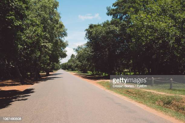 Empty Road Amidst Trees In City Against Sky