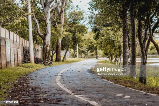 empty road amidst trees in city - sorocaba stock pictures, royalty-free photos & images