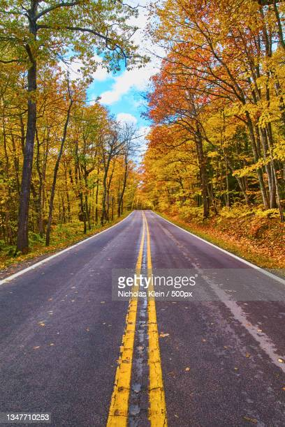 empty road amidst trees in forest during autumn - klein stock pictures, royalty-free photos & images