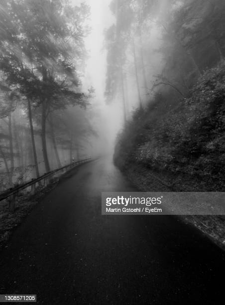 empty road amidst trees in forest - vaduz stock pictures, royalty-free photos & images
