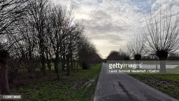 empty road amidst trees on field against sky - laura schmidt foto e immagini stock