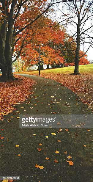 empty road amidst trees on field during autumn - worcester massachusetts stock pictures, royalty-free photos & images