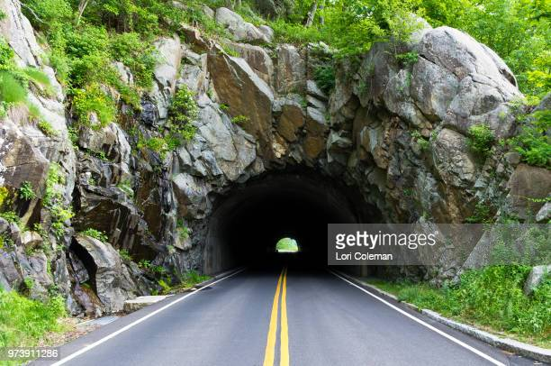 empty road and tunnel in shenandoah national park, virginia, usa - double yellow line stock photos and pictures