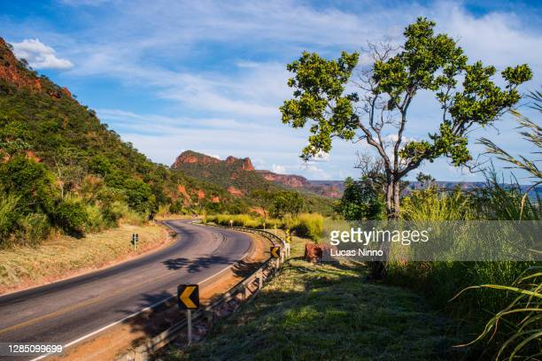 empty road - brazil. - cerrado stock pictures, royalty-free photos & images