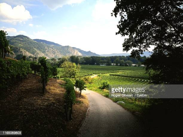 empty road by agricultural fields towards mountains against sky - sankt poelten stock pictures, royalty-free photos & images